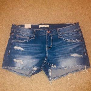 Buckle Daytrip Gemini denim shorts